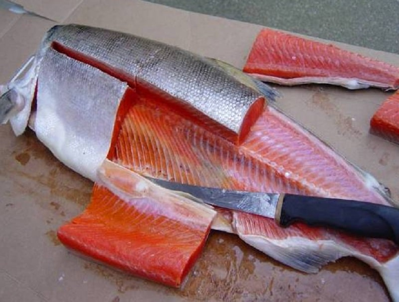 how to fillet a fish trout