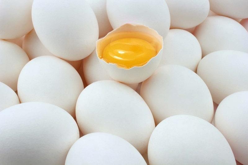egg substitute for binding