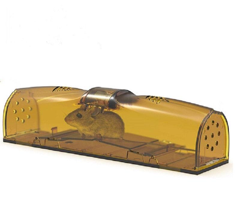 ankace mouse trap